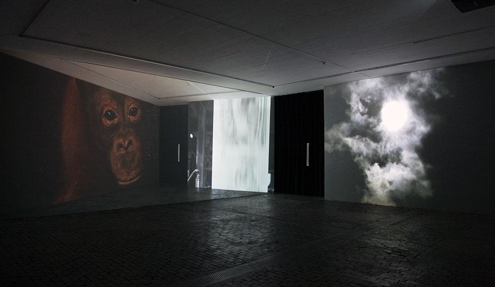 Axis, Loulou Cherinet på Konstnärshuset